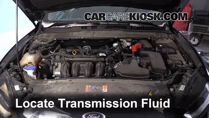 how to check automatic transmission fluid level ford focus
